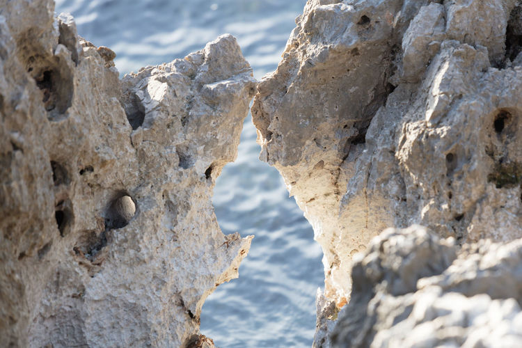 Close-up of rock formation on beach