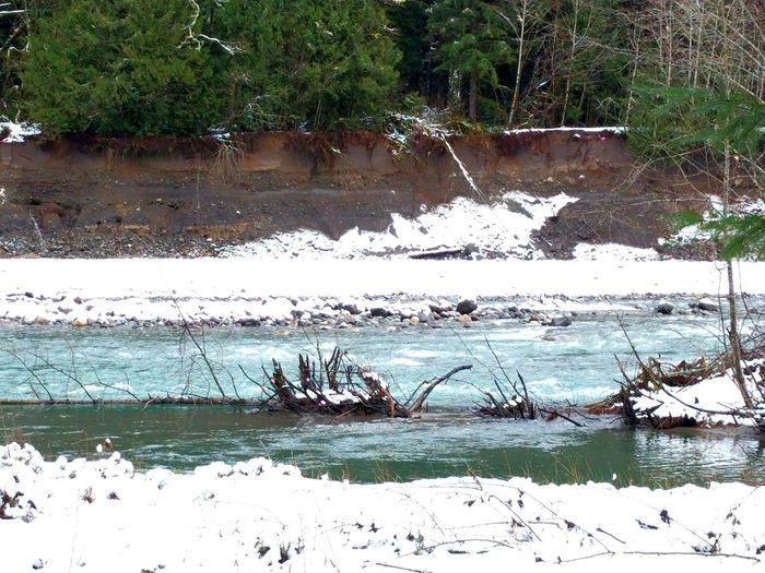 Sauk River looks cold. Cottage view. Winter Relaxing Taking Photos Washington State Pacific Northwest  Mountains Rivers Nationalforest Trees Tree Hugging Nature EyeEm Nature Lover Nature On Your Doorstep Its Cold Outside