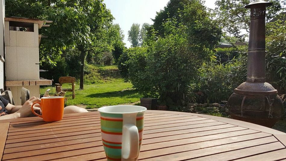 Relaxen im Garten Taking Photos Relaxing Outdoor Photography Breakfast Entspannen Erholung My Place My Place To Relax Hello World My Garden My Garden @my Home 2016 EyeEm Awards Color Palette My Favorite Place
