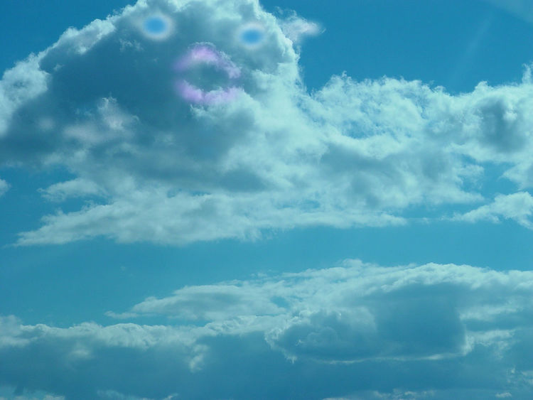 Fish In The Sky Cloud Visions Cloud Art What Do You See When You Look At The Clouds? Do You See What I See?