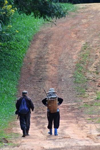 Walking Rear