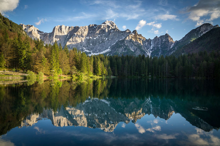Reflection of trees in fusine lake