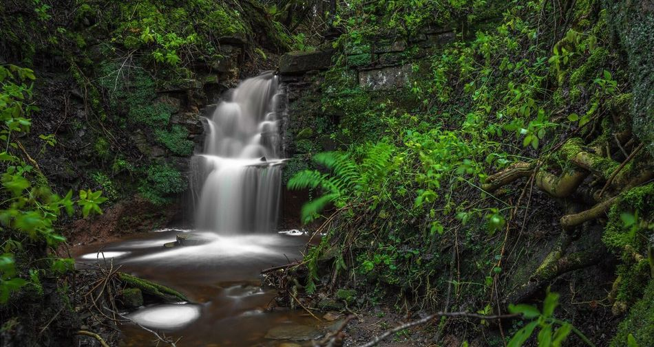 Motion Long Exposure Waterfall Flowing Water Water Blurred Motion Nature Beauty In Nature No People Scenics Growth Tree Outdoors Green Color Forest Day Tranquility Plant Power In Nature Landscape_Collection Landscape EyeEm Nature Lover