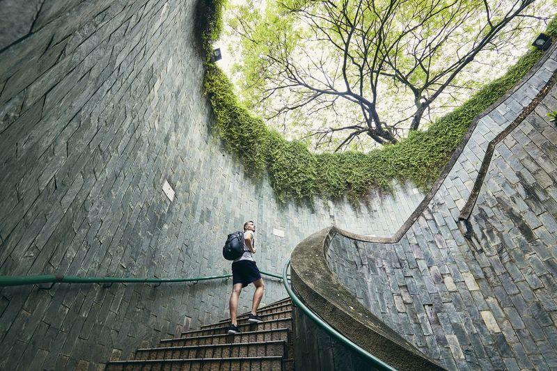 Man Walking On Steps Against Trees