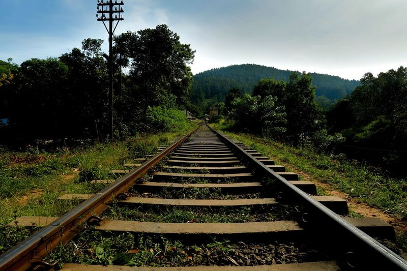 Vanishing point Sri Lanka 🇱🇰 Hdr_Collection Hdrphotography Growth Rail Transportation No People Direction The Way Forward Diminishing Perspective vanishing point Green Color Sky Day