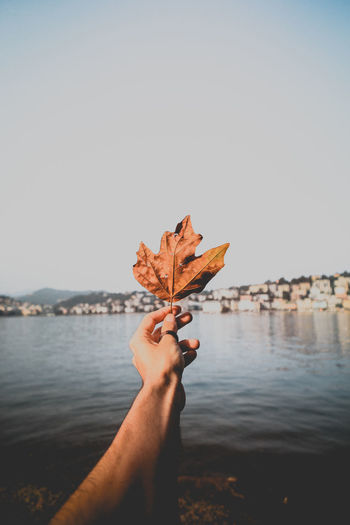 Cropped hand of man holding autumn maple leaf at lakeshore against sky