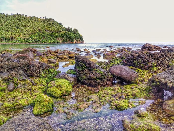 Low Tide Nature Beauty In Nature Horizon Over Water Tranquility Scenics SeaScapePhotography Flowers, Nature And Beauty Seascape Photography Eyeem Philippines Nature Photography EyeEm Best Shots Nature Collection Xperia XA Ultra Beauty In Nature Nature Photography