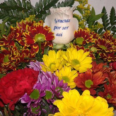 Ramo de flores colorido para festejar un evento, puedes ver mas en nuestra web de flores a domicilio http://graficflower.com, visitanos y sorprendelos. Floweroftheday Flowerslovers Flower Flowers Flowerstagram Rosesarered Roses Rosesofinstagram Rosesonly Rosas Rosasløyfe Rosasrojas Flores Floristeriasmalaga Floristerias Floristería
