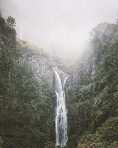 Risco Waterfall, Madeira, Portugal. My Best Photo Waterfall Water Scenics - Nature Tree Plant Mountain Land Motion Forest Beauty In Nature Environment Nature Day Flowing Water No People Power In Nature Rainforest Outdoors Mood Madeira Portugal Madeira Island Nature Hiking