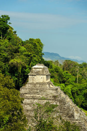 View of the Temple of the Inscriptions in Palenque, Mexico Ancient Archeology Building Chiapas Forest Heritage History Holiday Jungle Maya Mayan Mexico Nature Old Palenque Precolombian Pyramid Religion Ruin Stairs Stone Temple Travel Unesco View