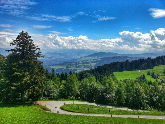 EyeEm Best Shots Sky Nature Landscape Mountain Outdoor Cloud - Sky Grass Forest Wald Bäume Und Himmel Bäume Berge Sunny Day 🌞 Clouds And Sky
