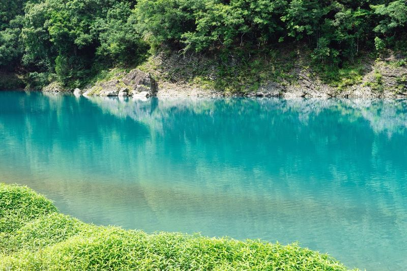 Riverside Riverside Photography Beauty In Nature Clear Water Blue Water Clear Water Green Color Reflections In The Water Kumano River Reflection Water Reflections No People Green Color Trees Branches Nature Nature Photography Summer Atomosphere Hot Day July July 2017 Kumano Travel Photography