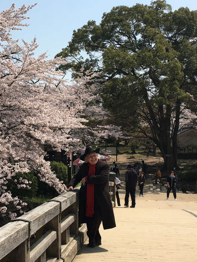 Cherry Blossom Happy Face Old Man Outdoors Springtime Standing Tourist Attraction  Tree