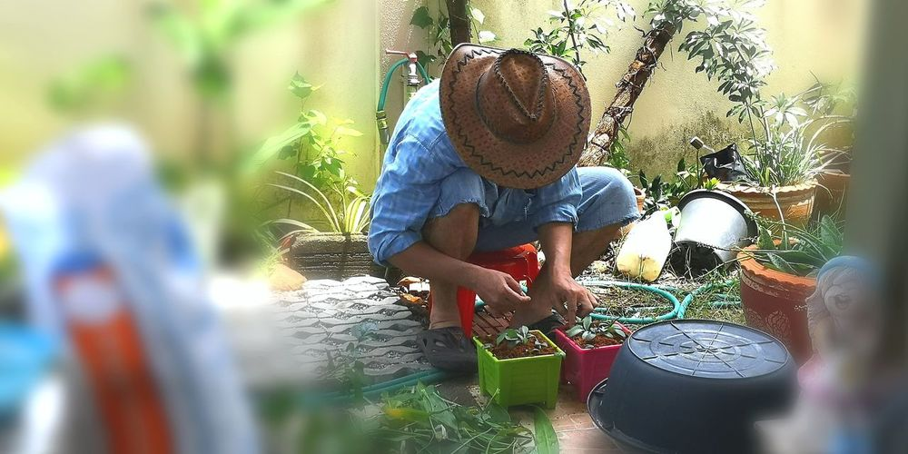 Lifr's For The Living* Lifestyles Gardener Green Color Blue Hut Childhood Spraying Togetherness Sprinkler Garden Hose Outdoor Play Equipment Hose Swing