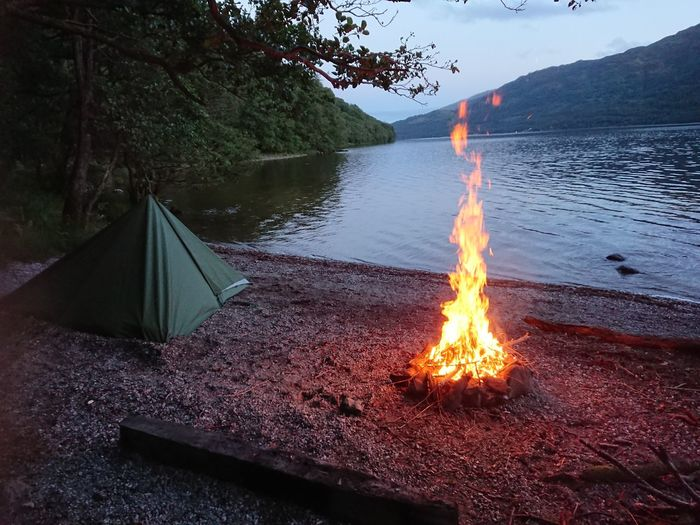 Bonfire by lake against trees in forest