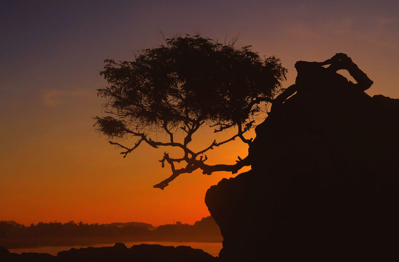 Silhouette tree on rock formation at kuta beach against sky during sunset