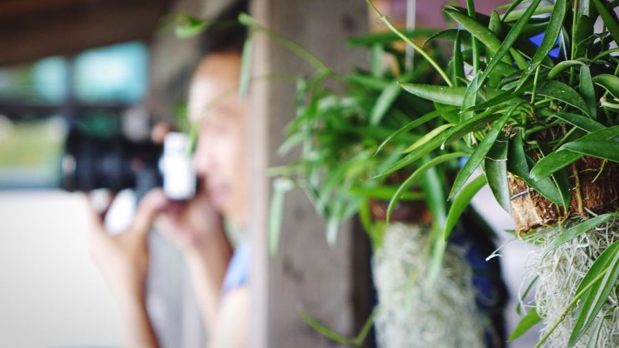 Photography Photographer Ivy Leaves Making Pictures Activity Moment Man Asian  Thailand Home Traveling Tourist Camera DSLR Mirrorless People And Places