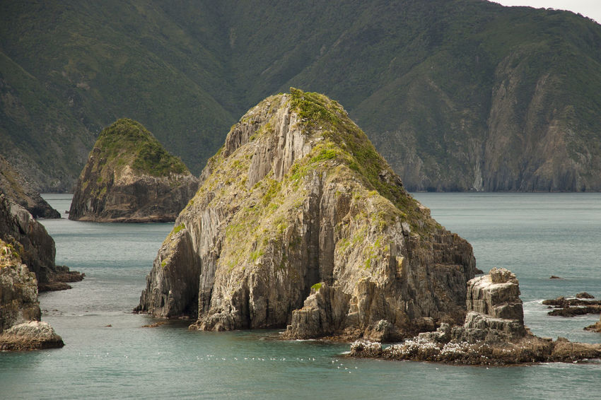 Marlborough Sound - New Zealand NZ Rock Formation Coast Fjord Marlborough Sounds New Zealand Picton