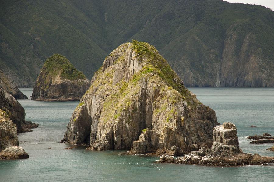 Marlborough Sound - New Zealand NZ Rock Formation Coast Fjord Marlborough Sounds New Zealand Picton