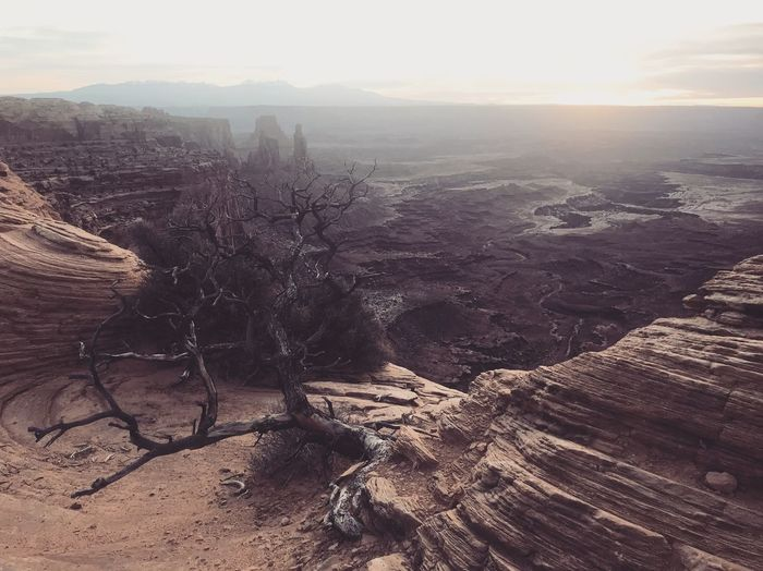In the darkest hour Canyonlands National Park, Utah Nature Sky Tranquility Scenics - Nature Landscape Environment Tranquil Scene