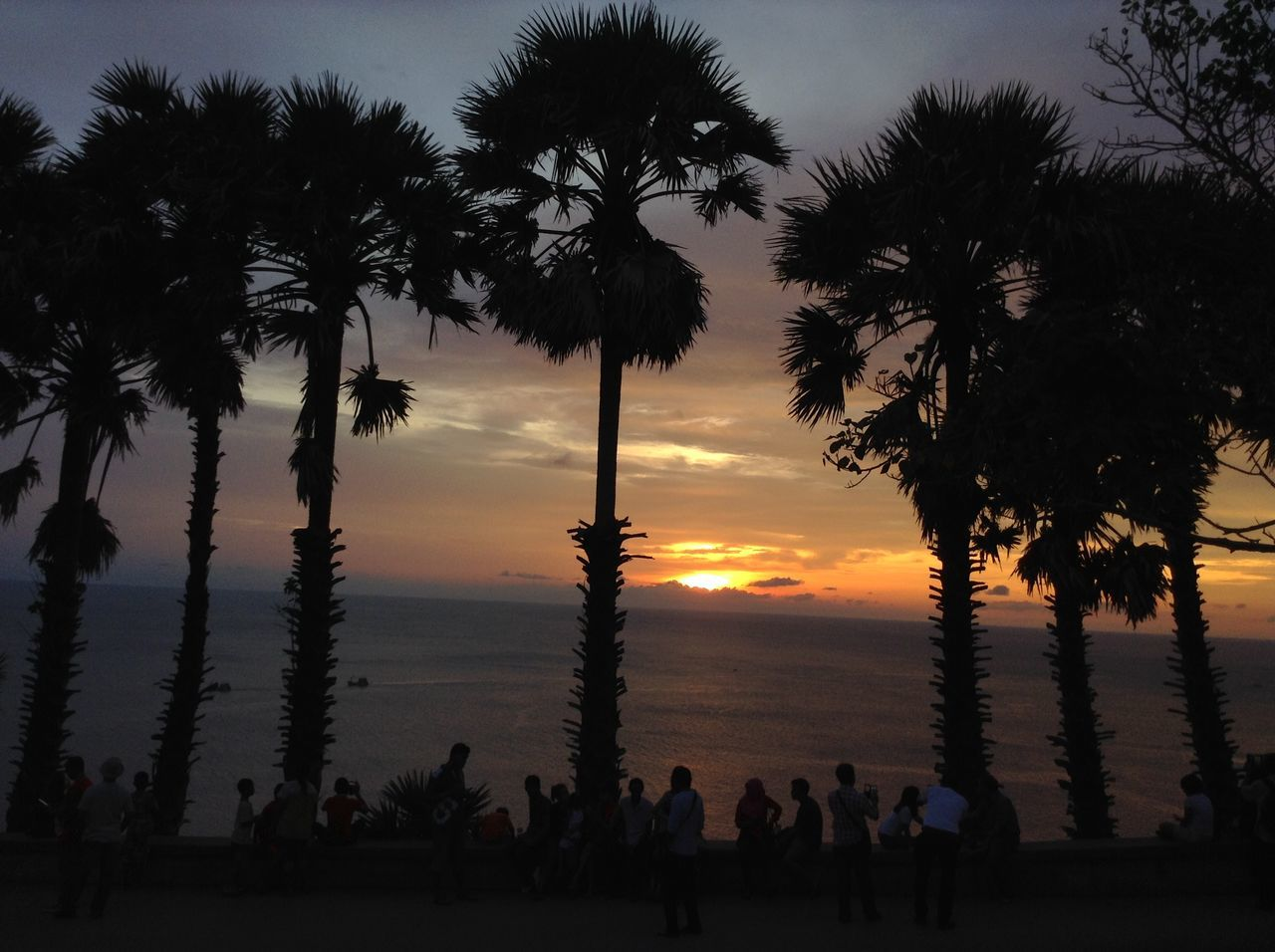 tree, palm tree, sunset, silhouette, nature, sky, beauty in nature, tree trunk, scenics, cloud - sky, growth, tranquility, lifestyles, outdoors, travel destinations, men, large group of people, real people, day, people