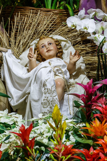 Madeira Island Baby Jesus Beauty In Nature Bouquet Crib Crib Figurine Day Flower Flower Head Fragility Freshness Growth Happiness Human Hand Nature One Person Outdoors People Plant Real People Smiling Statue Young Adult