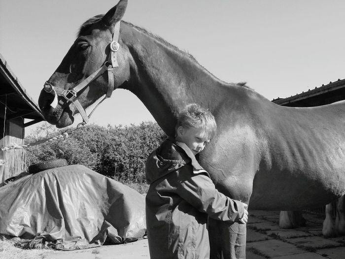 Boy embracing horse at stable