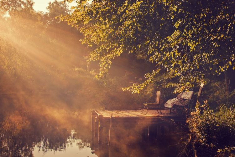 Landscape Wood Sunrays Sunbeam Morning Morning Light Lake Lake View Pier Jetty Autumn Seat Bench Fall Tree Tranquility Scenics Rural Scene Rural Scenes Tranquil Scene Landscapes Nature Landscape_Collection Landscape_photography