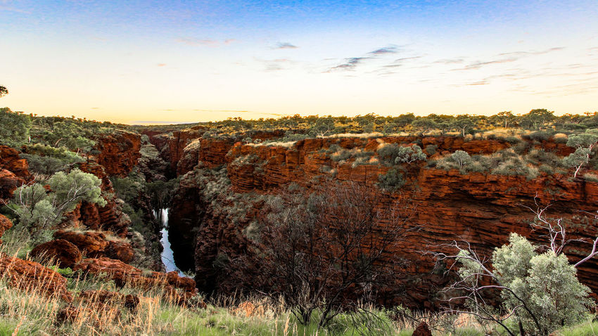 Joffre Gorge, Karijini National Park Australia Australian EyeEm Best Shots Green Outback Rock Formation The Week On EyeEm Travel Beauty In Nature Day Landscape Nature No People Outdoors Red Scenics Sky Sunrise Tranquil Scene Tranquility Travel Destinations Tree