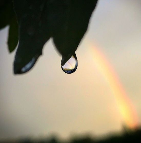 Rainbow in a water drop... Close-up Nature Focus On Foreground Drop Sky Selective Focus Beauty In Nature Water Outdoors No People Silhouette Sunset Day Lifestyles