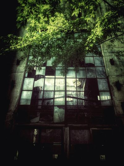 Traveling Darkness And Light Light And Shadow Ruins Urbex IPhoneography Japan 廃墟 Funiku