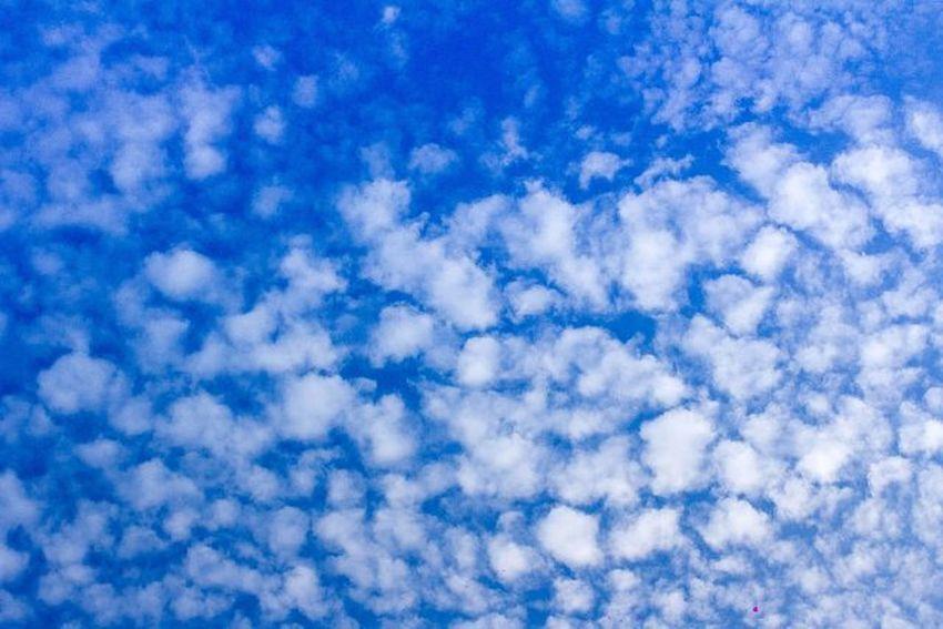 異鄉天空 藍天 白雲 空氣 隨拍 帶著鏡頭趴趴照 ☁⛅