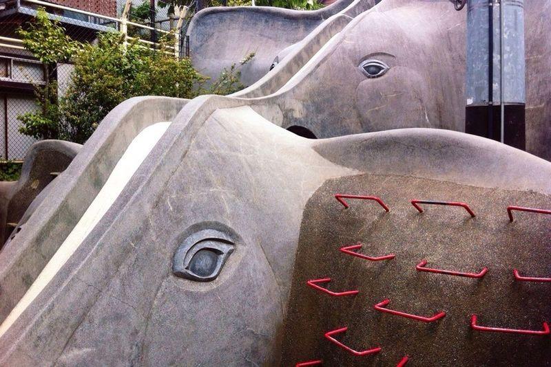 目が少し悲しげ。 Slide Elefant Park