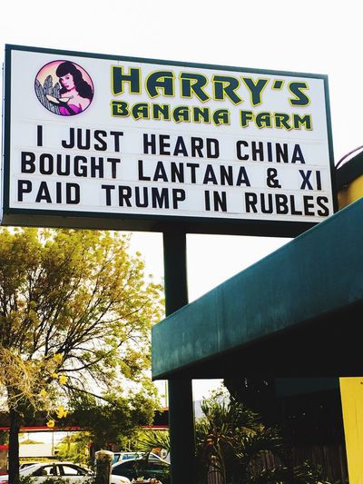 A humorous political opinion from Harry's Banana Farm in Lake Worth, Florida USA. Text Communication Road Sign Low Angle View Guidance Day No People Outdoors Street Scene Florida Dixie Highway Close-up Sky political Humor Donald Trump President China Putin Betty Page