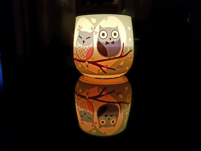Owl Candle with