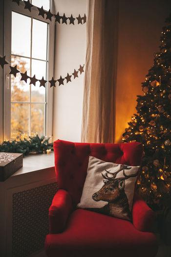 Christmas tree on sofa at home