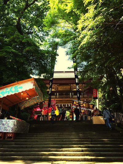 ありがとうございました Jinja 神社 参拝