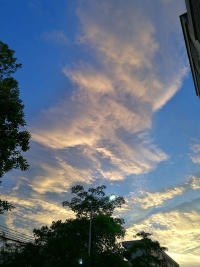After Storm⚡ Typhoon Weather Sunset Blue Sky Thick Clouds Dusk Streetshot Golden Colorful Sky Green Trees And Leaves Lights Moment Of Silence
