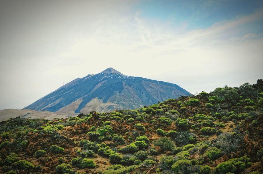 snowy pico del teide vulcano at national park, tenerife. Tenerife Teneriffa Del Teide Teide Vulcano Canary Islands