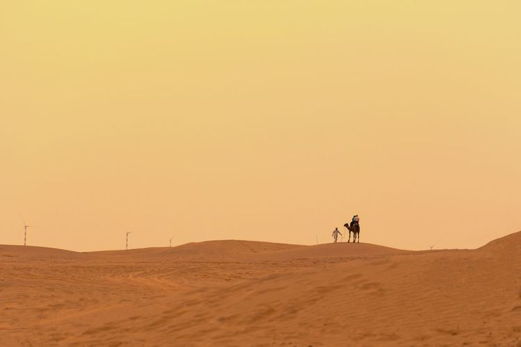 People riding in desert against sky during sunset