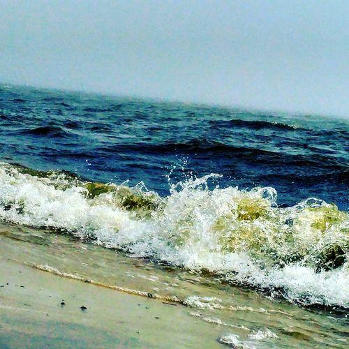 Showcase: February Showcase:february Beach Mississippi  Ms Gulf Coast