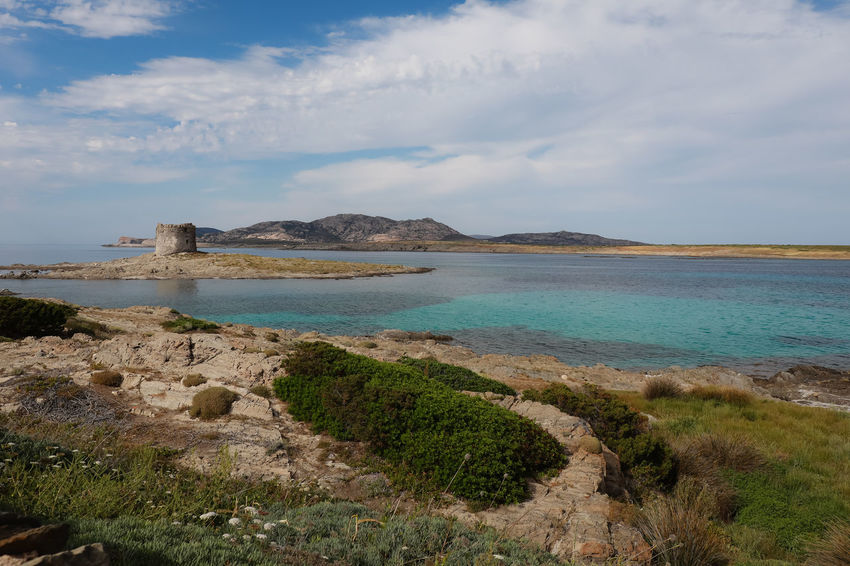Italy Italy❤️ Lapelosa Nature Stintino Stintino Sardegna Trip Trip Photo
