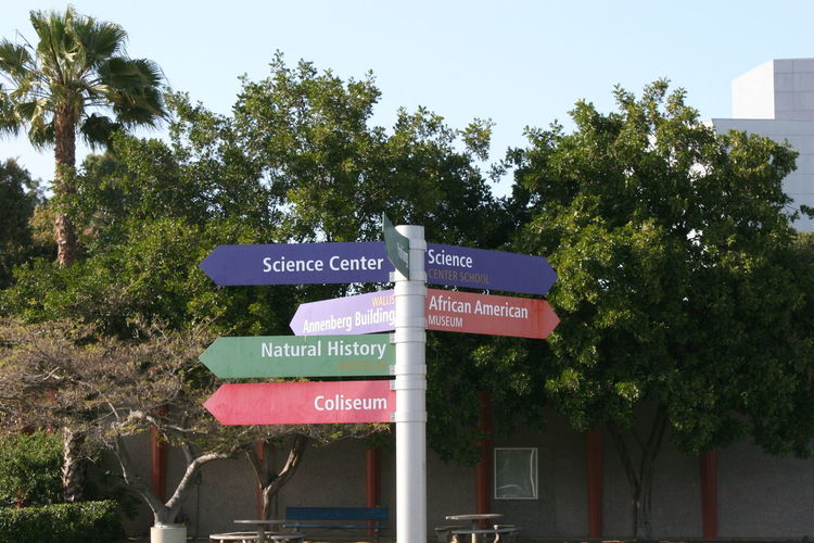 Signpost Exposition Park Los Angeles Coliseum Science Center African American Museum Annenberg Building Architecture Building Exterior California Science Center Close-up Communication Day Exposition Park Green Color Growth Guidance Nature No People Outdoors Road Sign Sciencenter Signpost Sky Street Name Sign Text Tree Western Script