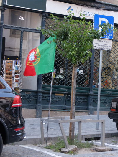 Euro 2016 Flag Green & Red Porto Portugal Street