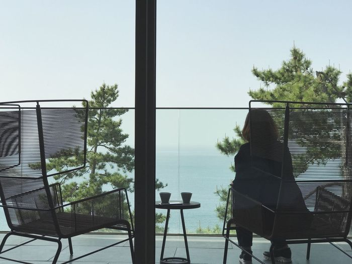 One Person Chair Window Real People Day Rear View Tree Lifestyles Sea And Sky Sea South Scape Korean Korean