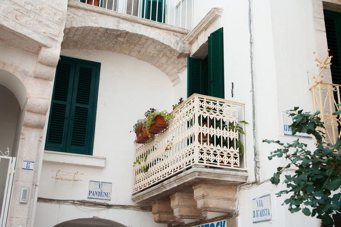 EyeEm Selects Architecture Built Structure Building Exterior Window Travel Destinations Façade Low Angle View City Palace Cisternino Puglia Puglia South Italy Italy Borghiditalia Borghipiúbelliditalia