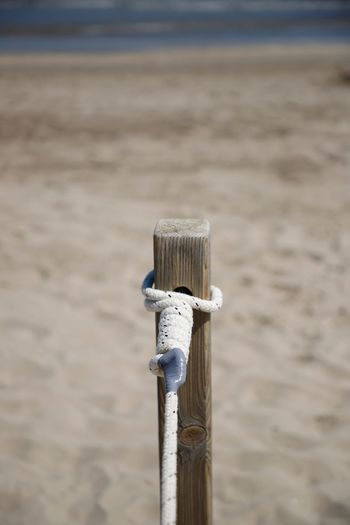 Focus On Foreground Wood - Material Day No People Nature Post Wooden Post Close-up Metal Rope Post Beach Sand Node Node Center Still Life Beachphotography Beachlife Beach Photography Barrier