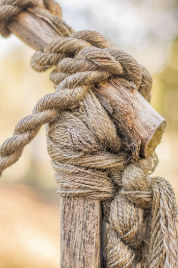 Close-up of rope tied up of wood
