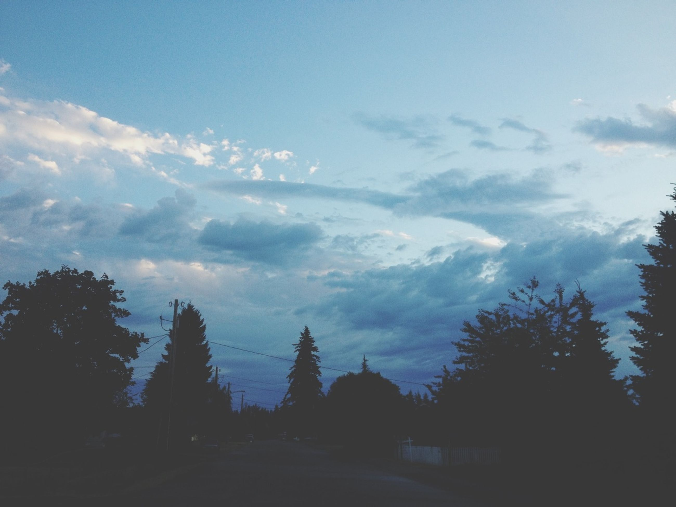 tree, sky, silhouette, tranquility, tranquil scene, cloud - sky, scenics, beauty in nature, nature, cloud, landscape, cloudy, growth, outdoors, idyllic, sunset, no people, non-urban scene, sunlight, low angle view