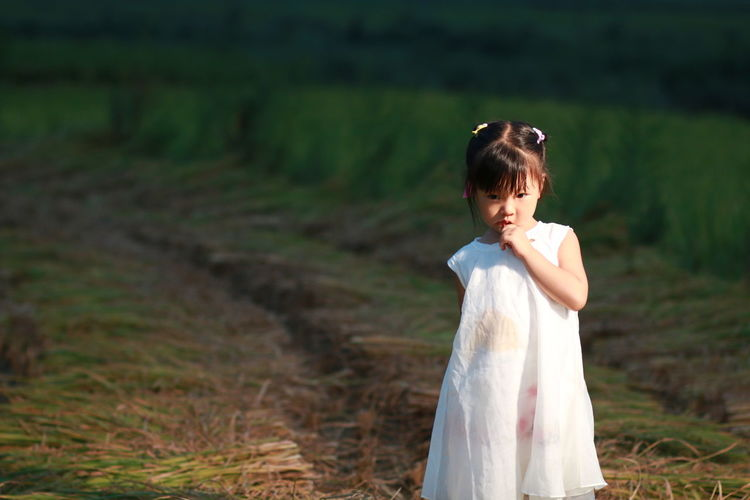 The unhappy little girl standing in the rice field Land One Person Standing Field Lifestyles Childhood Real People Leisure Activity Nature Child Focus On Foreground Day Plant Looking Hairstyle Females Girls Three Quarter Length Contemplation Innocence Outdoors Summer Skirt Beautiful Beauty Countryside Farm Farmland Backgrounds Black Background Light Shadow People Cute Nature Natural Plant High Angle View Unhappy Hair Architecture ASIA Chinese Food Rice Field Evening Green Color White Color Black Blur Blurred